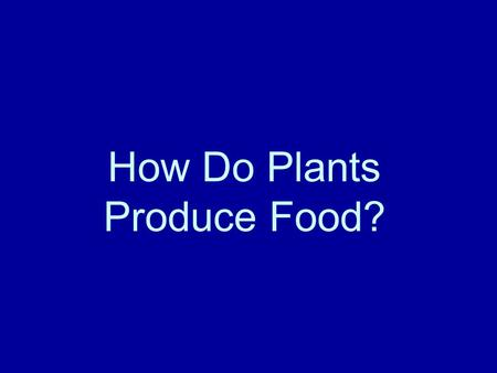 How Do Plants Produce Food?. What are the basic parts of the plants? Roots, stems, leaves.