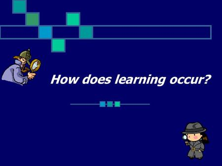 How does learning occur?. We all take in the world around us in different ways!