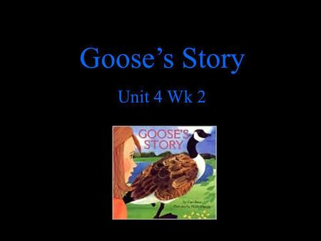 Goose's Story Unit 4 Wk 2. Wider: larger from side to side, broader adjective A desk is wider than a book. What is wider than your desk?