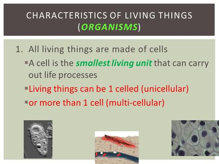 1. All living things are made of cells  A cell is the smallest living unit that can carry out life processes  Living things can be 1 celled (unicellular)