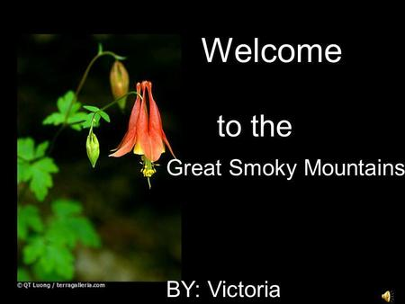 Welcome to the Great Smoky Mountains BY: Victoria.
