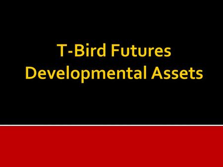 " The Developmental Assets come from research done by the Search Institute.  They are like ""building blocks"" – relationships, experiences, values, attitudes,"