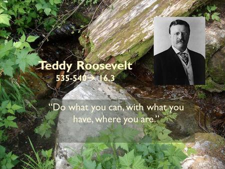 "Teddy Roosevelt 535-540  16.3 ""Do what you can, with what you have, where you are."""