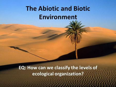 The Abiotic and Biotic Environment EQ: How can we classify the levels of ecological organization?
