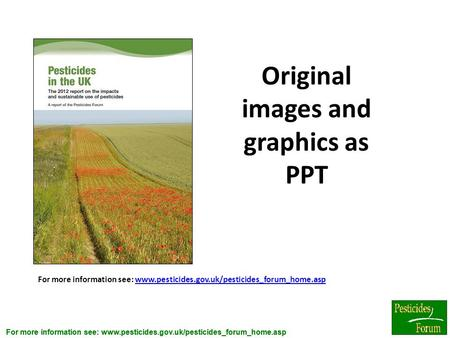 Original images and graphics as PPT