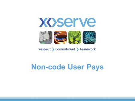 Non-code User Pays. 2 What we will cover Background Current Services Governance Arrangements What is working well What is not working as well.