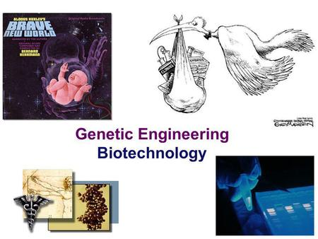 2006-2007 Genetic Engineering Biotechnology (c) define the term recombinant DNA; (d) explain that genetic engineering involves the extraction of genes.