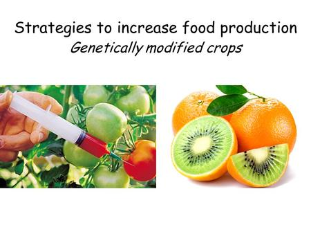 Strategies to increase food production Genetically modified crops.
