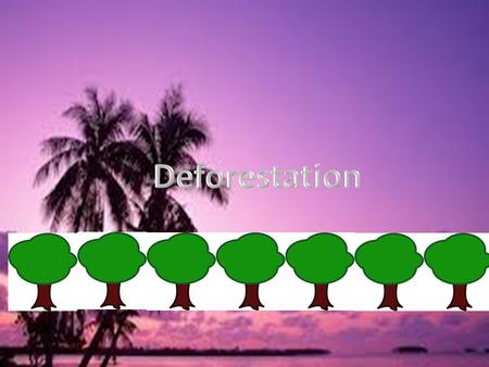 Deforestation.