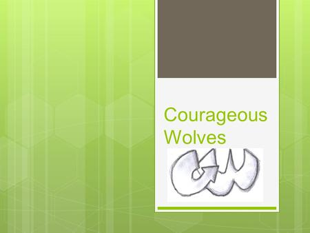 Courageous Wolves. What is the problem ? Many people do not have enough money to pay electric bills and buy batteries. Nowadays, electric bills and the.