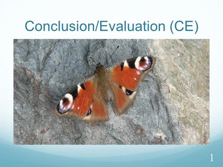 Conclusion/Evaluation (CE) 1. Section 3:Conclusion and Evaluation 2.