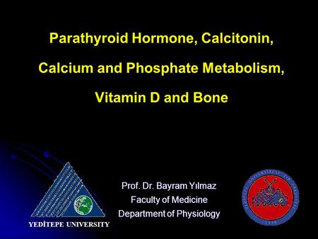 Parathyroid Hormone, Calcitonin, Calcium and Phosphate Metabolism, Vitamin D and Bone Prof. Dr. Bayram Yılmaz Faculty of Medicine Department of Physiology.