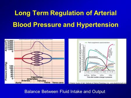 Long Term Regulation of Arterial Blood Pressure and Hypertension Balance Between Fluid Intake and Output.