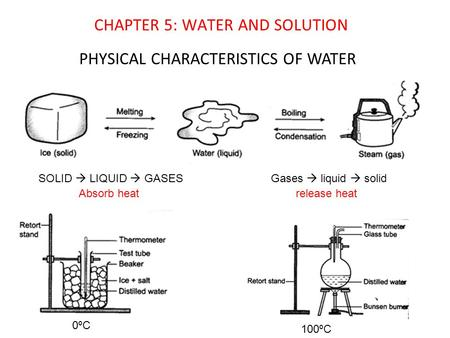 PHYSICAL CHARACTERISTICS OF WATER 0ºC 100ºC CHAPTER 5: WATER AND SOLUTION SOLID  LIQUID  GASES Absorb heat Gases  liquid  solid release heat.