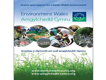 "Working in Partnership What do we do? ""Pioneering ideas need fertile soil to take root and be nurtured. It's the nurturing bit that Environment Wales."