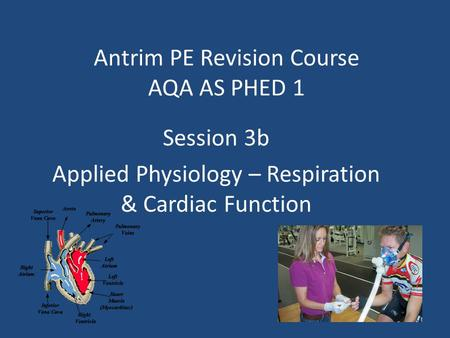 Antrim PE Revision Course AQA AS PHED 1 Session 3b Applied Physiology – Respiration & Cardiac Function.