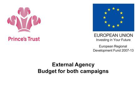 External Agency Budget for both campaigns.  Agency budget for youth facing & private sector campaign – including any media buying required is £49,000.