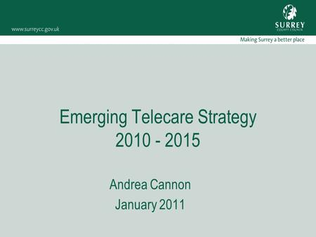 Emerging Telecare Strategy 2010 - 2015 Andrea Cannon January 2011.