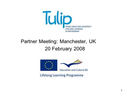 1 TULIP Partner Meeting: Manchester, UK 20 February 2008.