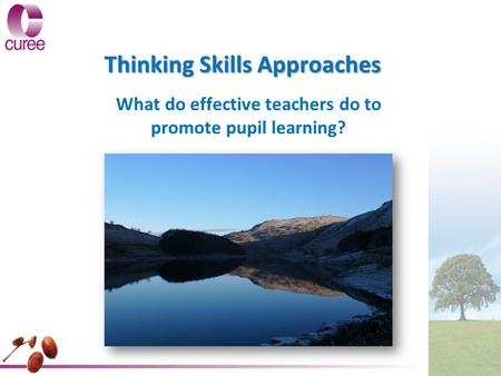 Thinking Skills Approaches What do effective teachers do to promote pupil learning?