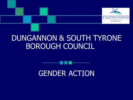 DUNGANNON & SOUTH TYRONE BOROUGH COUNCIL GENDER ACTION.
