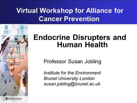 Virtual Workshop for Alliance for Cancer Prevention Endocrine Disrupters and Human Health Professor Susan Jobling Institute for the Environment Brunel.