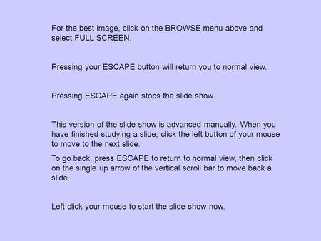 For the best image, click on the BROWSE menu above and select FULL SCREEN. Pressing your ESCAPE button will return you to normal view. Pressing ESCAPE.