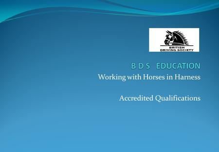 Working with Horses in Harness Accredited Qualifications.