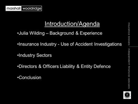 Introduction/Agenda Julia Wilding – Background & Experience Insurance Industry - Use of Accident Investigations Industry Sectors Directors & Officers Liability.