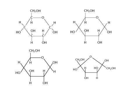 Monosaccharides (CH 2 O) n If n=3, triose (glyceraldehyde) If n=5, pentose (ribose) If n=6, hexose (glucose, galactose) Monosaccharides are used for –Energy.