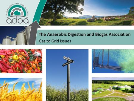 The Anaerobic Digestion and Biogas Association Gas to Grid Issues.