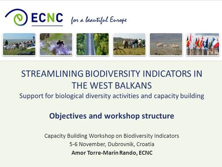 For a beautiful Europe Capacity Building Workshop on Biodiversity Indicators 5-6 November, Dubrovnik, Croatia Amor Torre-Marín Rando, ECNC STREAMLINING.