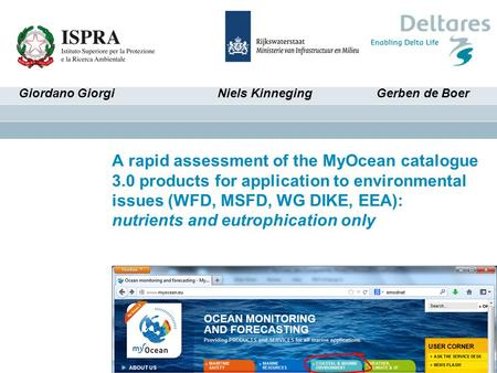A rapid assessment of the MyOcean catalogue 3.0 products for application to environmental issues (WFD, MSFD, WG DIKE, EEA): nutrients and eutrophication.