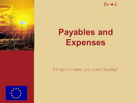 PwC Payables and Expenses