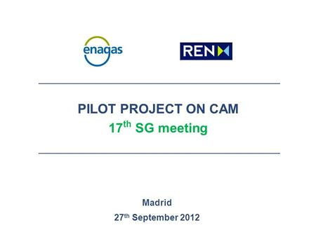 PILOT PROJECT ON CAM 17 th SG meeting Madrid 27 th September 2012.