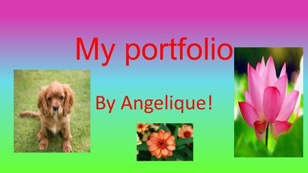 My portfolio By Angelique! Multiple intelligence quiz!!
