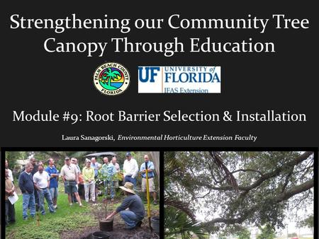 Strengthening our Community Tree Canopy Through Education Module #9: Root Barrier Selection & Installation Laura Sanagorski, Environmental Horticulture.