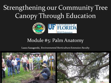 Strengthening our Community Tree Canopy Through Education Module #5: Palm Anatomy Laura Sanagorski, Environmental Horticulture Extension Faculty.