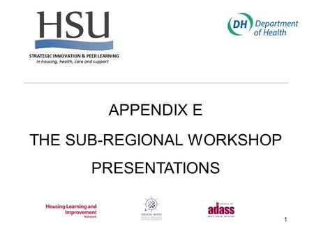 1 APPENDIX E THE SUB-REGIONAL WORKSHOP PRESENTATIONS.