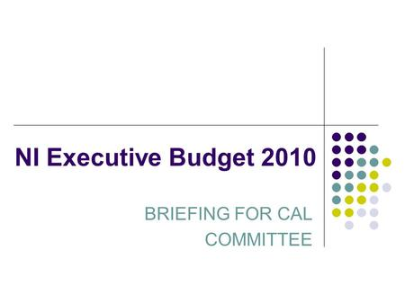 NI Executive Budget 2010 BRIEFING FOR CAL COMMITTEE.