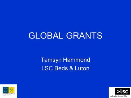 GLOBAL GRANTS Tamsyn Hammond LSC Beds & Luton. What are Global Grants? Small scale grants for local community and voluntary organisations and other non-governmental,