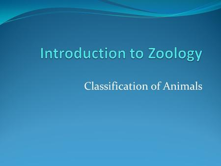 Classification of Animals. Review Biology is the study of life… So what makes something living?