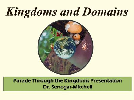 Kingdoms and Domains Parade Through the Kingdoms Presentation Dr. Senegar-Mitchell.
