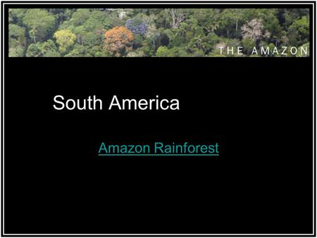 South America Amazon Rainforest. The World's Rainforests Rainforests cover 7% of the Earth's land surface. The world's tropical rainforests are home to.