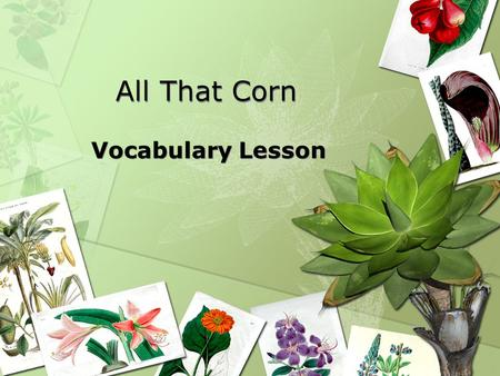 All That Corn Vocabulary Lesson. ELA1R5 The student acquires and uses grade-level words to communicate effectively. The student a. Reads and listens to.