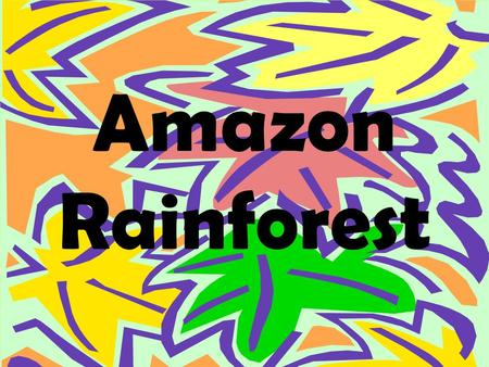 Amazon Rainforest. What are Rainforests? Dense forest found in tropical areas of heavy rainfall.