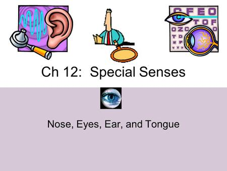 Ch 12: Special Senses Nose, Eyes, Ear, and Tongue.