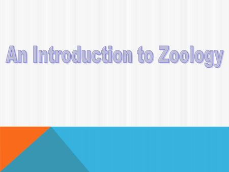 I. Basics A.Zoology is the study of the entire animal kingdom zo- {New Latin} = animal; -ology = study of, knowledge B. Zoology is a subset of biology.