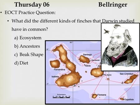 Thursday 06Bellringer EOCT Practice Question: What did the different kinds of finches that Darwin studied have in common? a)Ecosystem b)Ancestors c)Beak.