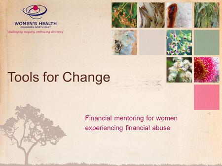 Tools for Change Financial mentoring for women experiencing financial abuse.